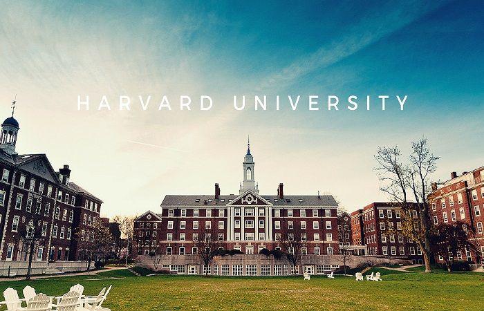 крупный университет