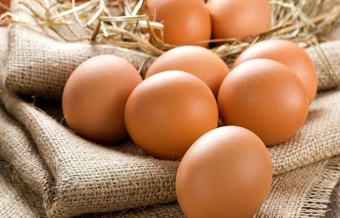 яйца лежат